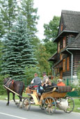 zakopane horse and cart ride