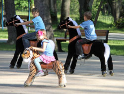 Animal rides in the park